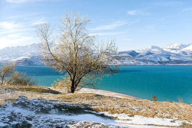 Reservatório charvak no inverno