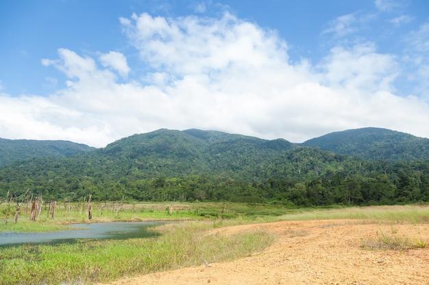 Reservatórios, vales e florestas