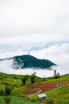 Resorts e pousadas na montanha com pôr do sol na manhã do ponto de vista, phu thap boek