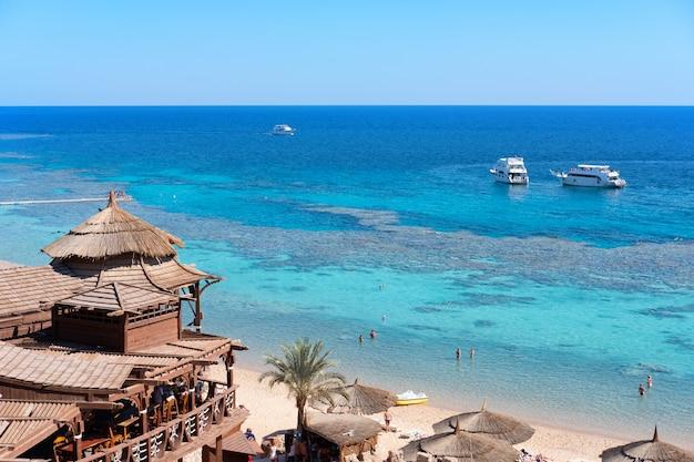 Restaurante na costa do mar com corais e peixes debaixo d'água, vista dividida acima e abaixo da superfície da água