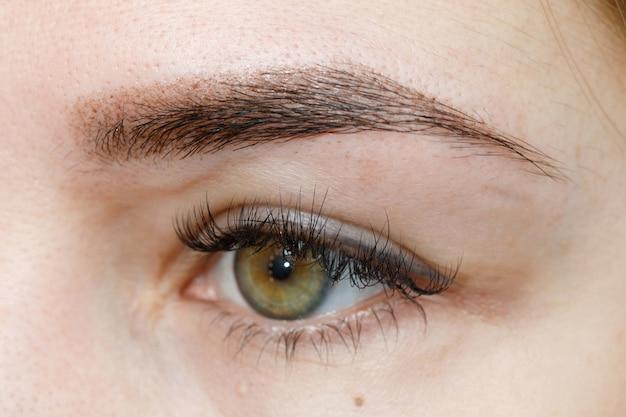 Resultado de maquiagem permanente, tatuagem de sobrancelhas