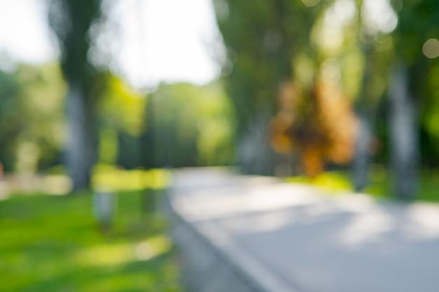 Resumo blur cidade parque bokeh para um