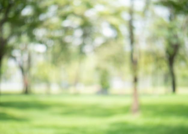 Resumo borrão cor verde no jardim