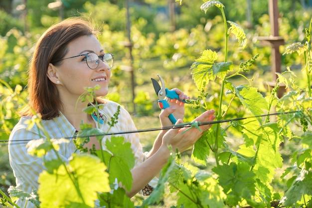 Retrato ao ar livre de primavera de mulher madura, trabalhando em vinhedo