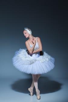 Retrato da bailarina no papel de um cisne branco sobre fundo azul