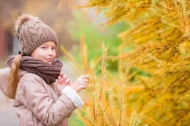 Retrato, de, adorável, menininha, com, amarela, árvores, fundo, em, outono
