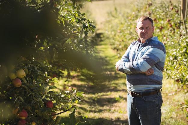 Retrato, de, agricultor, ficar, com, braços cruzaram, em, pomar maçã