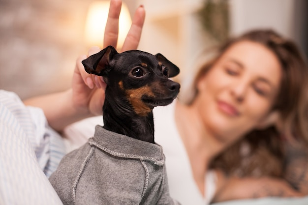 Retrato de cachorrinho e seu dono deitado na cama. mulher alegre de pijama.