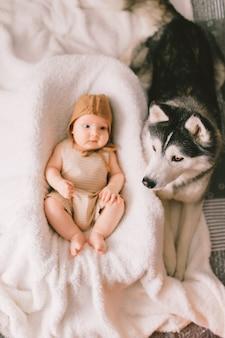 Retrato de cima do adorável bebê pijama elegante, deitada na cama com filhote de cachorro husky perto dele