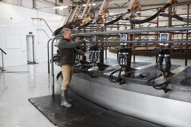 Retrato de corpo inteiro de trabalhador maduro configurando máquina de ordenha de vacas industriais em uma fazenda leiteira moderna, copie o espaço