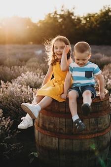 Retrato de corpo inteiro de um adorável irmão e irmã sentados em um barril de madeira em um campo de flores, definhando contra o pôr do sol.