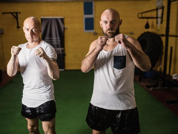 Retrato de dois boxer em pé