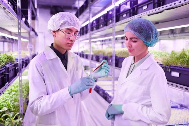 Retrato de dois cientistas segurando um tubo de vidro com um líquido vermelho da cintura para cima enquanto trabalhava em uma estufa agrícola, copie o espaço