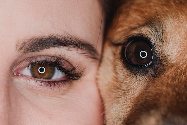 Retrato de estúdio de olhos humanos e cão. conceito de animais de estimação