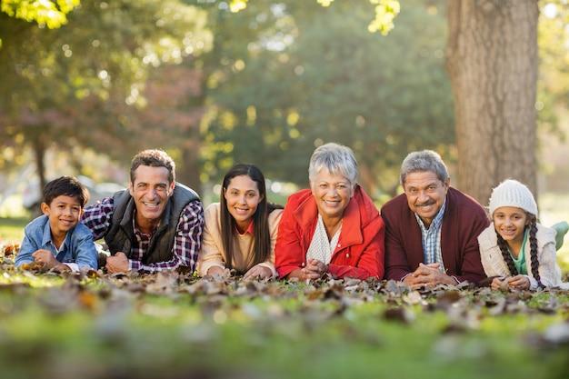 Retrato, de, família, mentindo frente, parque