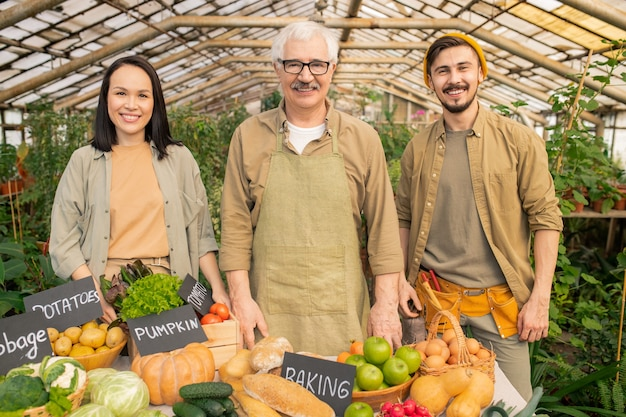 Retrato de fazendeiro sênior positivo com avental vendendo alimentos orgânicos com jovens assistentes no mercado orgânico