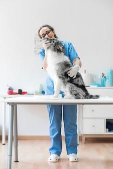 Retrato, de, femininas, veterinário, examinando, cão, sentar tabela, em, clínica