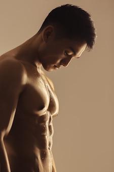 Retrato de homem musculoso asiático dentro de estúdio