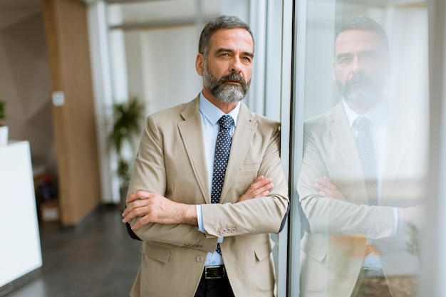 Retrato, de, homem negócios sênior, por, a, janela