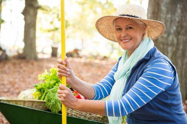 Retrato de jardineiro confiante com ferramenta e carrinho de mão no jardim
