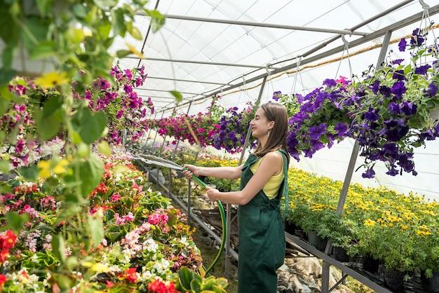 Retrato de jardineiro de mulher bonita regando as plantas e flores em estufa. copie o espaço