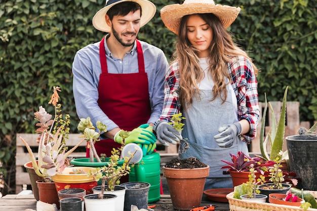 Retrato de jardineiro masculino e feminino, cuidando das plantas no jardim