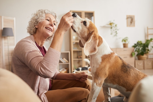 Retrato de mulher alegre sênior brincando com um cachorro e dando guloseimas enquanto aproveitam o tempo juntos em casa
