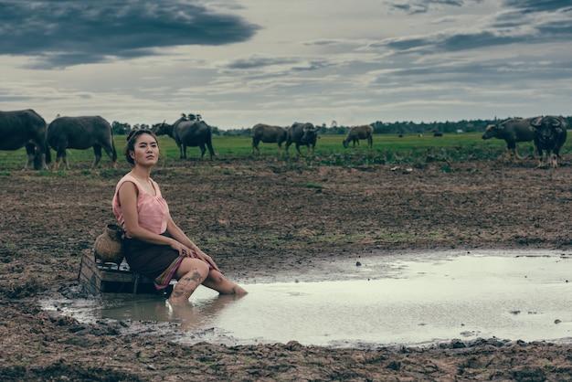 Retrato de mulheres rurais no vestido tailandês com búfalos