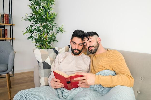 Retrato, de, par gay, relaxante, junto, ligado, sofá, enquanto, leitura livro