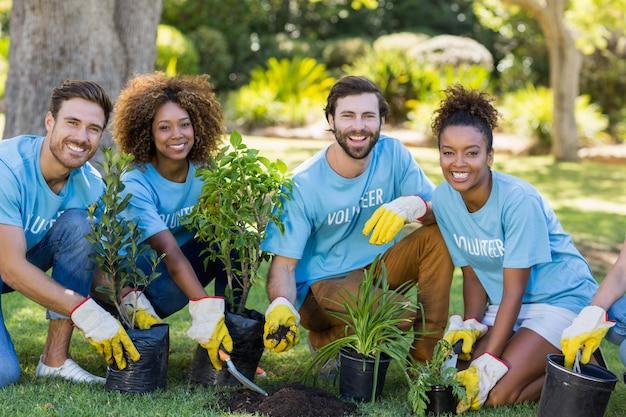 Retrato de plantio em grupo voluntário