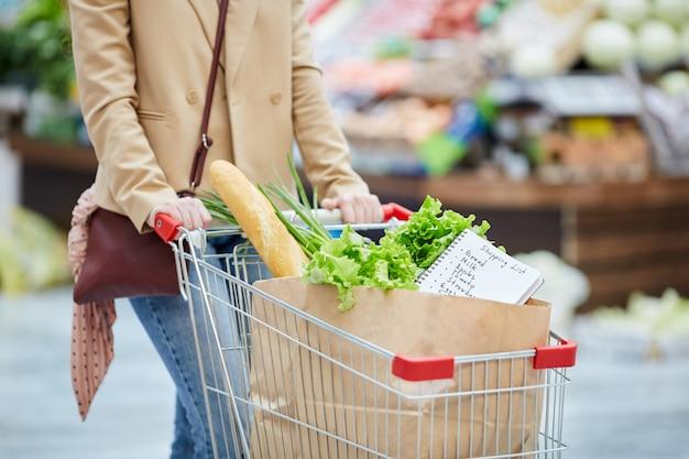 Retrato de seção intermediária de uma jovem irreconhecível empurrando o carrinho de compras enquanto comprava mantimentos no mercado de fazendeiros ou supermercado