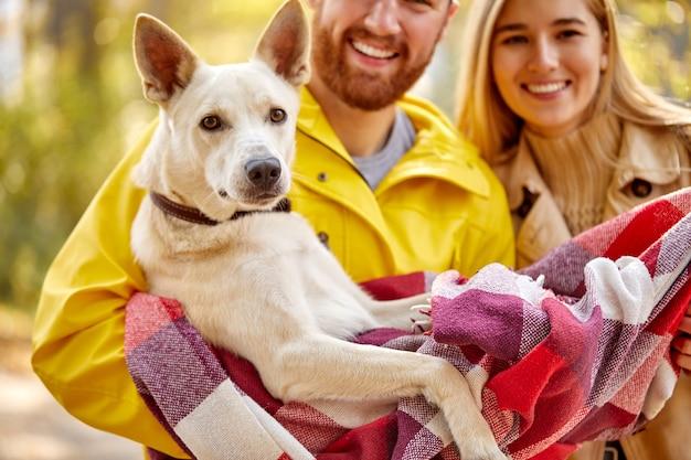 Retrato de um adorável cão de estimação nas mãos de um casal na floresta, durante a caminhada. felizes donos de cachorros adoram passar tempo com cachorros