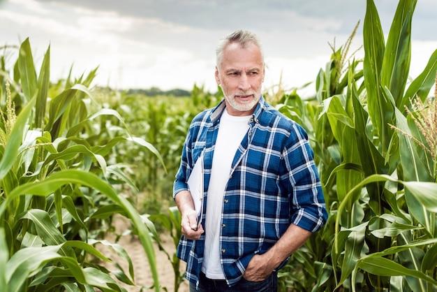 Retrato de um agrônomo sênior que está em um campo de milho que guarda originais.