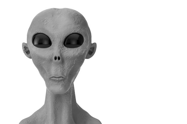 Retrato de um alienígena cinza em um fundo branco. renderização 3d