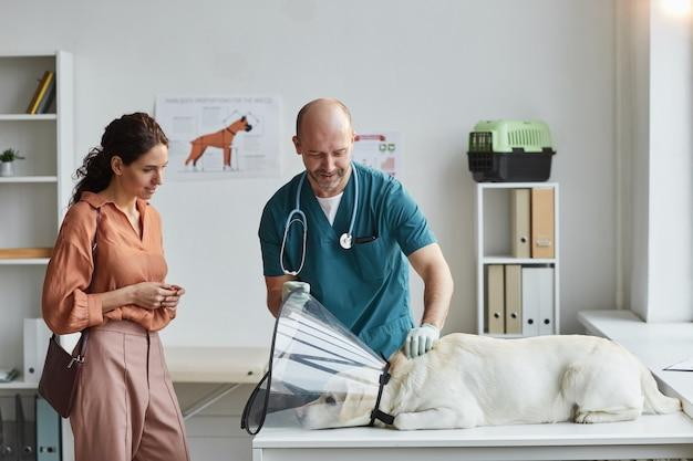 Retrato de um cão examinando veterinário maduro na clínica veterinária com uma jovem observando-o, copie o espaço