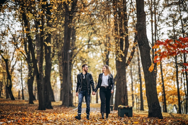 Retrato de um casal apaixonado feliz andando ao ar livre no parque outono. homem mulher, segurar passa, e, smilling