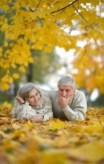 Retrato de um casal feliz de idosos no parque outono