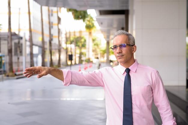 Retrato de um empresário persa bonito com cabelos grisalhos do lado de fora de um edifício moderno na cidade Foto Premium
