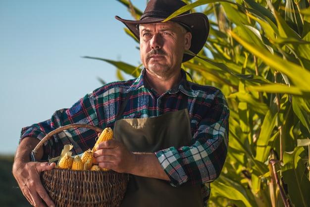 Retrato de um fazendeiro de chapéu, avental, com uma cesta de milho maduro e suculento ao pôr do sol em um milharal