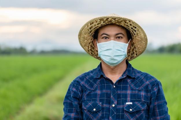 Retrato de um fazendeiro tailandês usando máscara protetora e parado no campo de arroz verde
