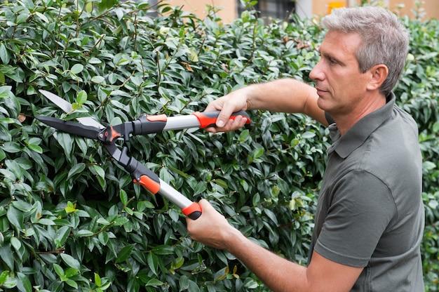 Retrato de um jardineiro cortando caules de plantas com tesoura
