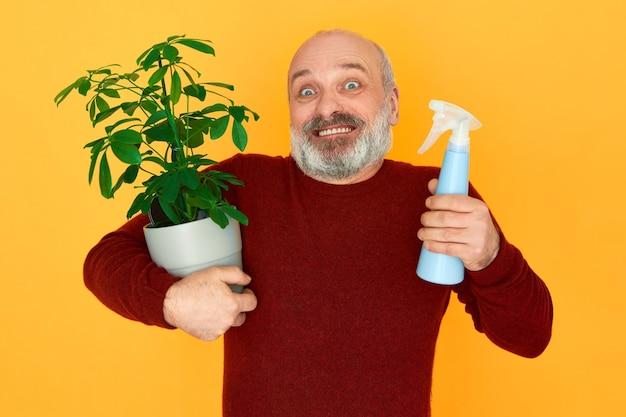 Retrato de um jardineiro idoso com barba grisalha segurando um frasco de spray e uma planta de casa com folhas verdes