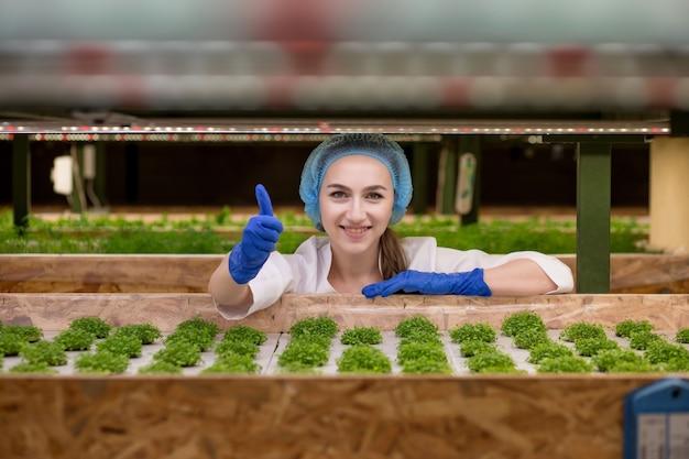Retrato de um jovem agricultor colhendo vegetais de uma fazenda hidropônica pela manhã