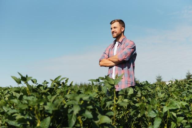 Retrato de um jovem agricultor feliz inspecionando as plantações de soja. industria agricola