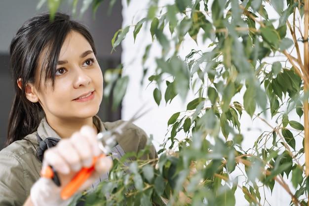 Retrato de um jovem jardineiro remover galhos secos de uma planta de casa com uma poda em casa