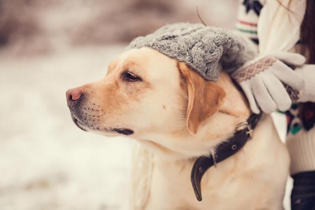 Retrato, de, um, menina, e, um, cão