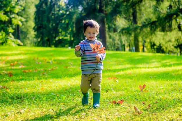 Retrato de um rapaz pequeno em um fundo da grama. garotinho em uma camisola.