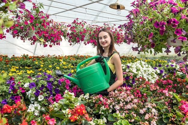 Retrato de uma bela mulher jardineiro regando plantas e flores em estufa
