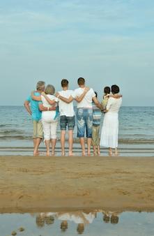 Retrato de uma família feliz na praia no verão, vista traseira