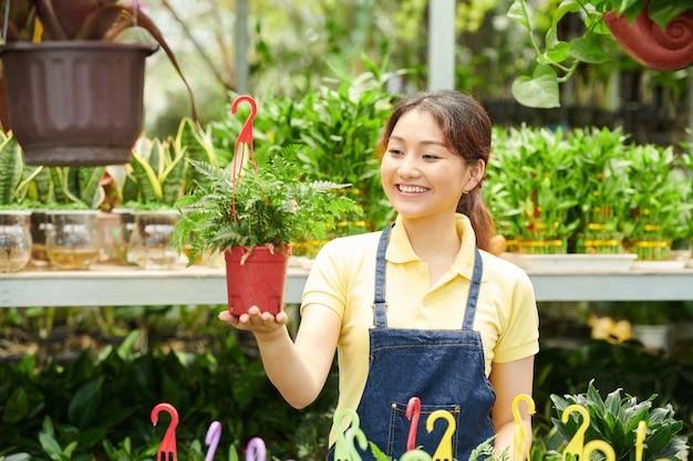 Retrato de uma jovem feliz e animada olhando para uma planta de samambaia em um vaso com um cabide que é vendido no centro de jardinagem